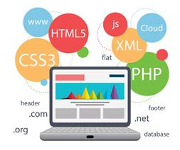 قبل از طراحی وب سایت به چه نکاتی باید توجه کرد ؟