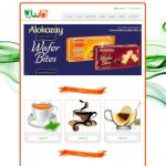 طراحی وب سایت شرکت دایبان