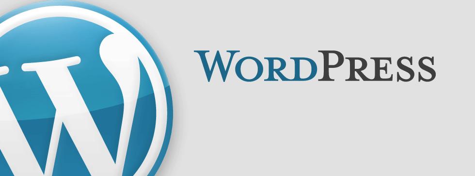 استفاده از cms طراحی سایت وردپرس